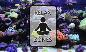 Aquarium Video by Relax Zones