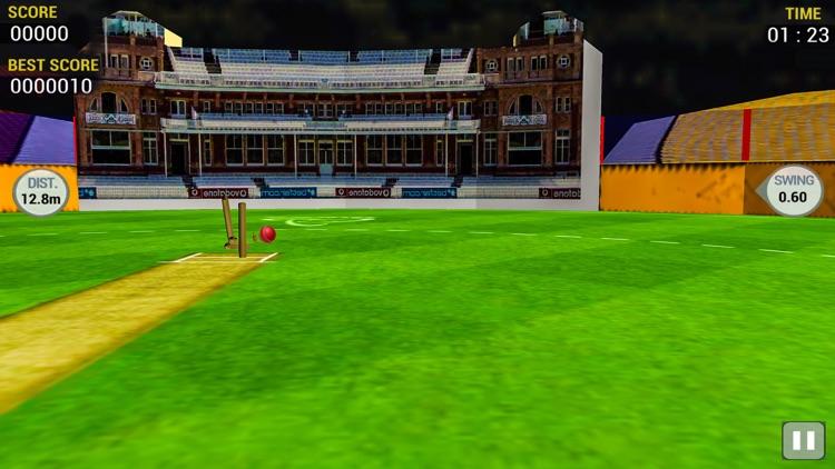 Cricket Run Out 3D screenshot-4