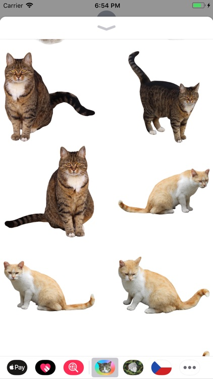 Cat Stickers Meow screenshot-6