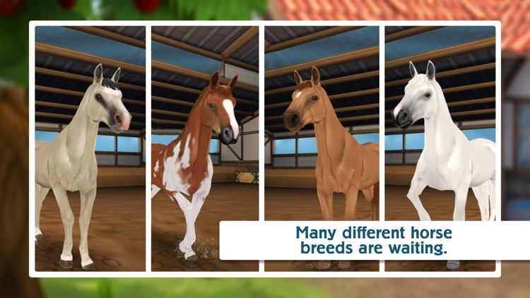 Horse Hotel - care for horses screenshot-5