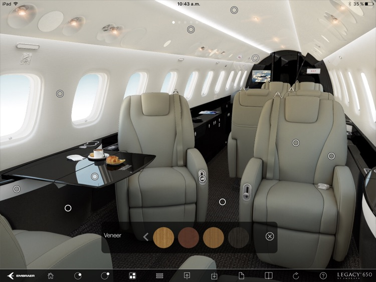 Legacy 650 Configuration Tool