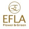 インテリアや結婚祝いに!胡蝶蘭と観葉植物の通販「EFLA」