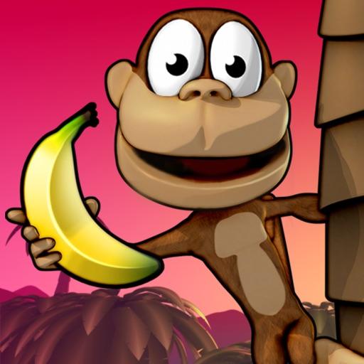 Monkey Bongo icon