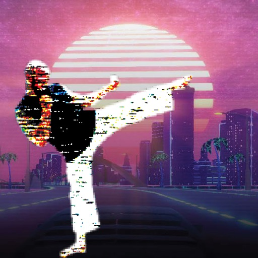 VaporKai-Karate Fight!