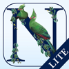 Newman's Birds of Africa LITE