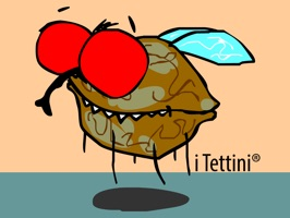 The Fly Noce Moscata