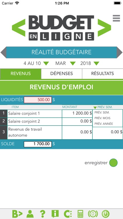 Budget en ligne screenshot-4