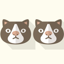 Animal Twins - Brain Puzzle Game