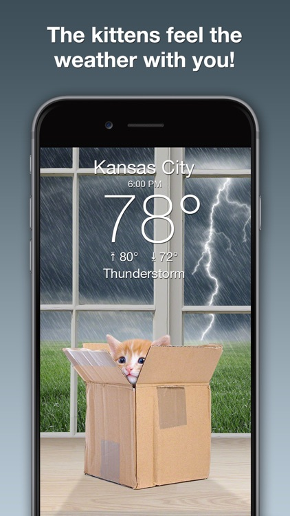 Weather Kitty: Forecast & Cats screenshot-1