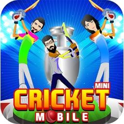 2017 Mini Cricket Mobile Game
