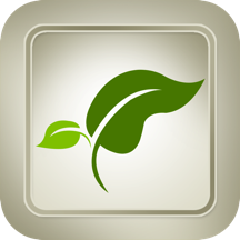 Medicinal Plants and Drugs