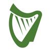 Irish Independent News
