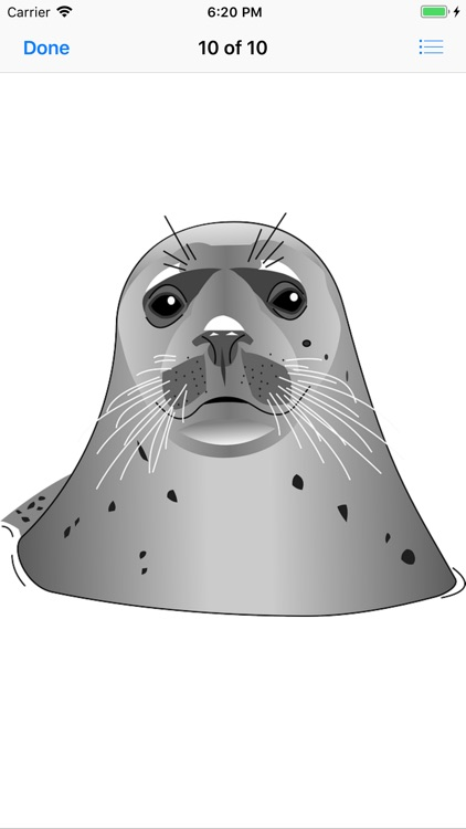 Slippery Seal Stickers screenshot-9