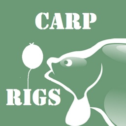 Carp Fishing Rigs HD
