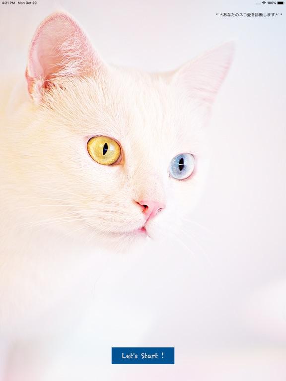 猫好き診断 screenshot 3