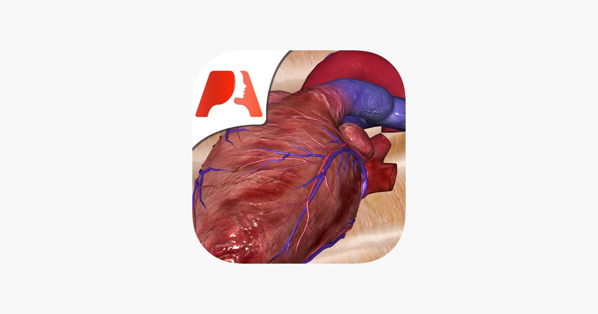 Pocket Heart on the App Store