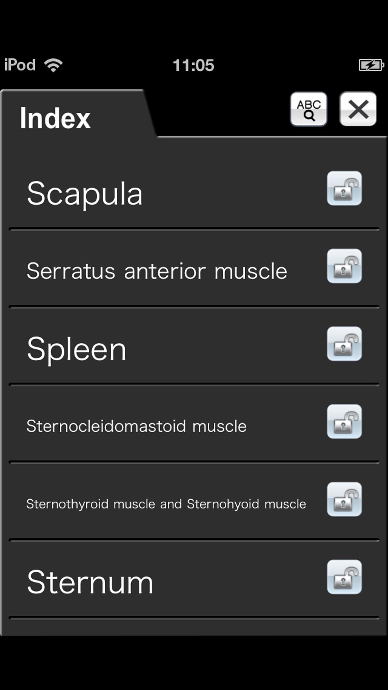 Chest CT Sectional Walker Screenshot