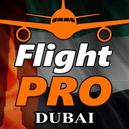 Pro Flight Simulator Dubai 4K