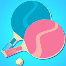 Activities of Table Tennis Master 3D