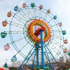 Activities of Theme Park Fun Swings Ride In Amusement Park