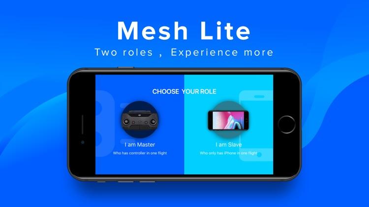 Mesh Lite - DJI Dual Flight