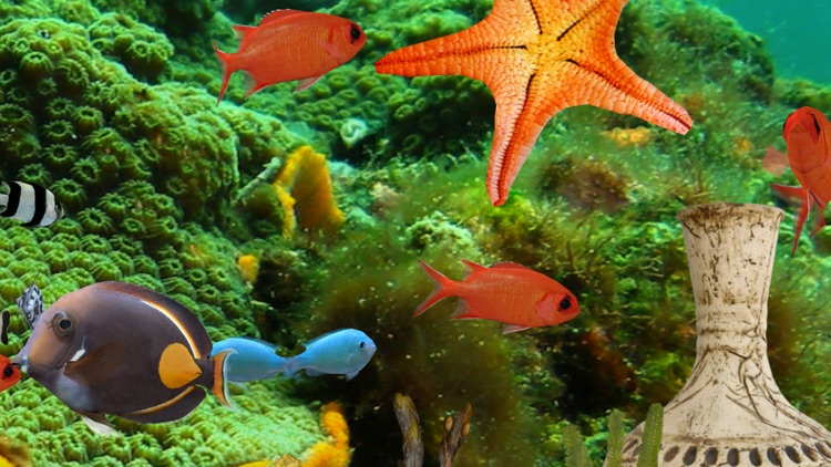 MyReef 3D Aquarium 2 HD screenshot-3