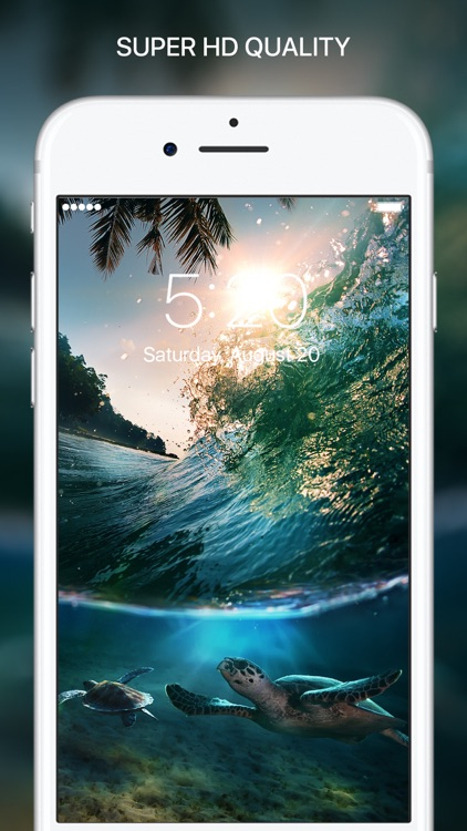 Everpix HD Wallpapers - Cool Backgrounds & Themes