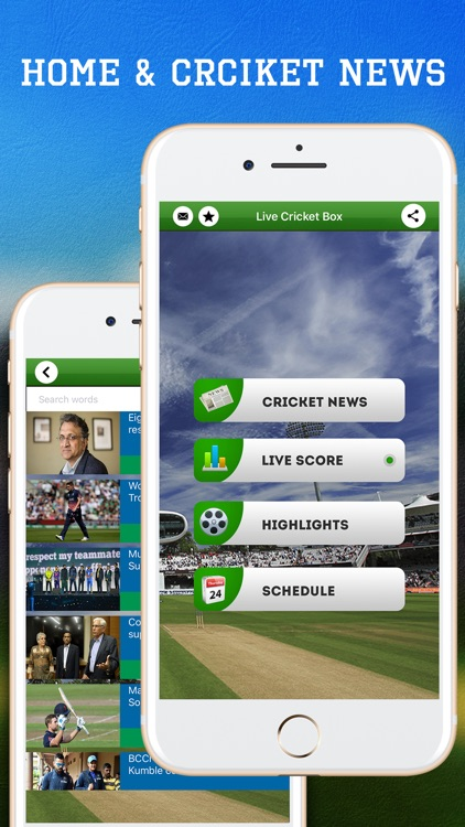 Live Cricket Box