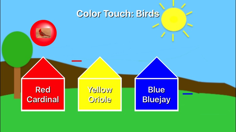 Color Touch: Birds screenshot-1
