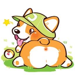 Super Cute Corgi Dog Sticker