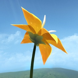 Flower  - 256x256bb - The Most Beautiful Games on iOS