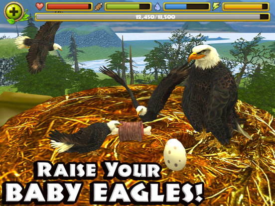 Eagle Simulator для iPad