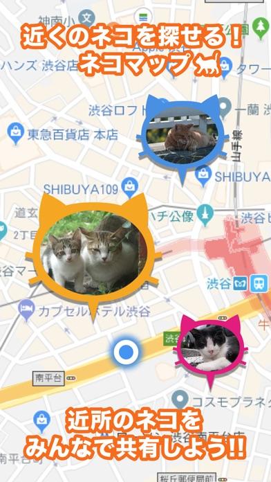 近所の ネコや ノラネコを共有するアプリ『ねこ さがし』紹介画像1