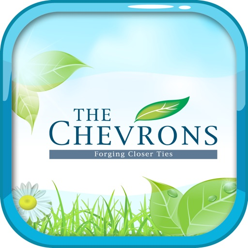 THE CHEVRONS
