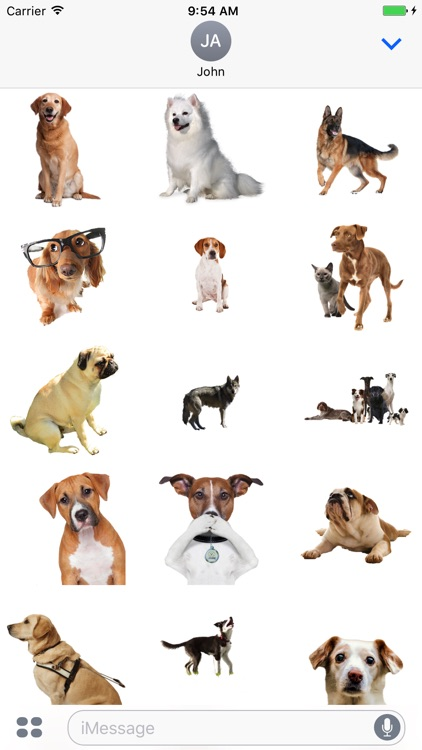 Fun Dogs Stickers