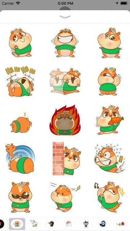 Hamster Cool