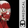 Muscle System Pro III - 3D4Medical.com, LLC