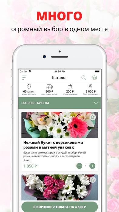 Mr. Flower   Иваново Скриншоты3