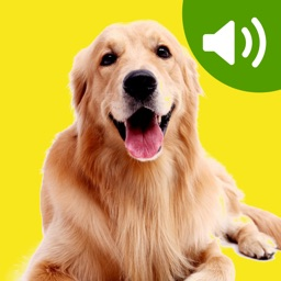 Best Dog Sounds