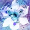 Blue Iris Reviews