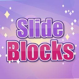 slide blocks: the puzzle