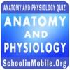 解剖生理学実践試験