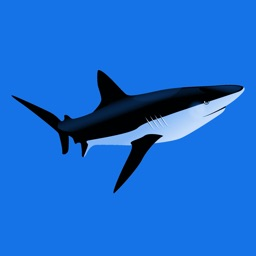 Sharks 2.0