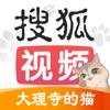 搜狐视频-我在大理寺当宠物全网独播
