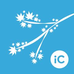 iC Brushes - ABR Importer