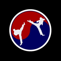 Precision Tae Kwon Do Academy