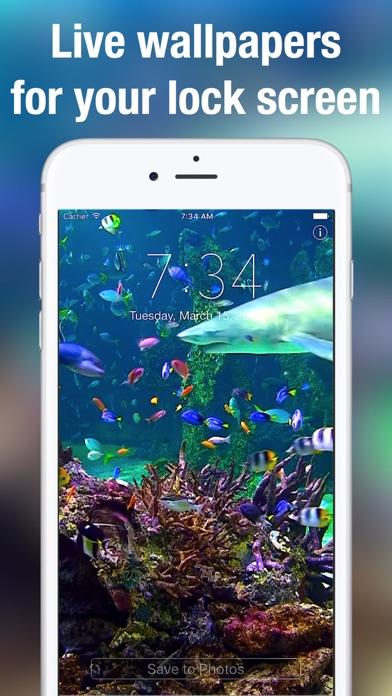 Screenshot #1 for Aquarium Dynamic Wallpapers