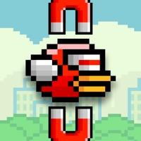 Codes for Magnet Bird Hack