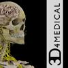Brain & Nervous System Pro III - 3D4Medical.com, LLC