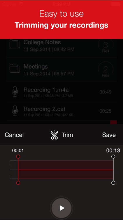 Recorder Plus : Voice Recorder screenshot-3